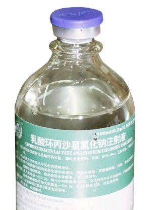 Ciprofloxacin Lactate Pharmaceutical Injection 100ml / Glass Bottle